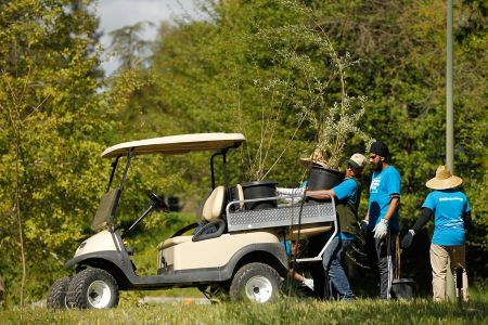 Golf Cart To Carry Garden Geer