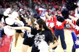 Cheerleaders And Senior Dog Squad