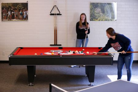 Bulldog-pool-table10