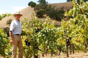 Winemaker In The Field