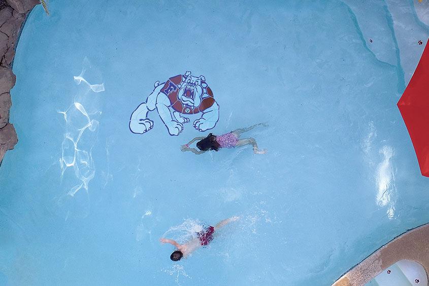 bulldog pool